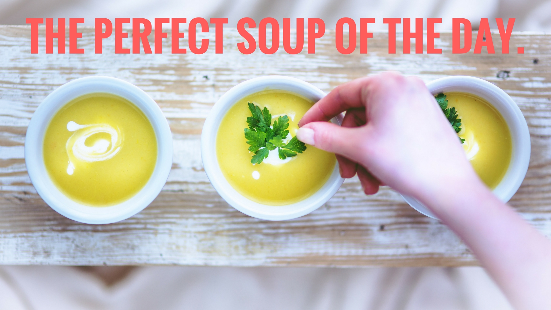 The Perfect Soup of the Day